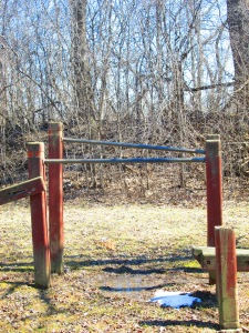 These were described as 'parallel bars'